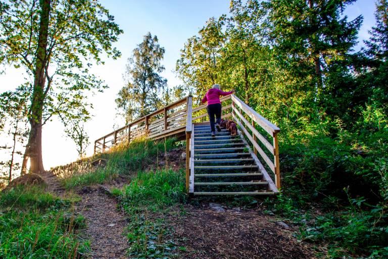 Nainen kiipeää portaita Rapolanharjun maisematasanteelle