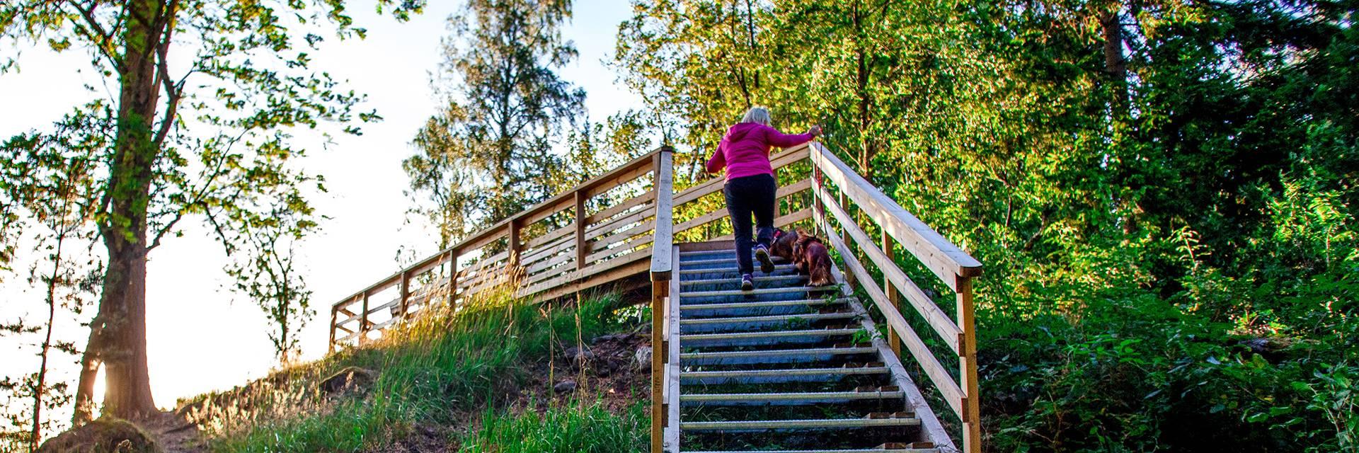 Nainen kiipeää portaita Rapolanharjun näköalatasanteelle