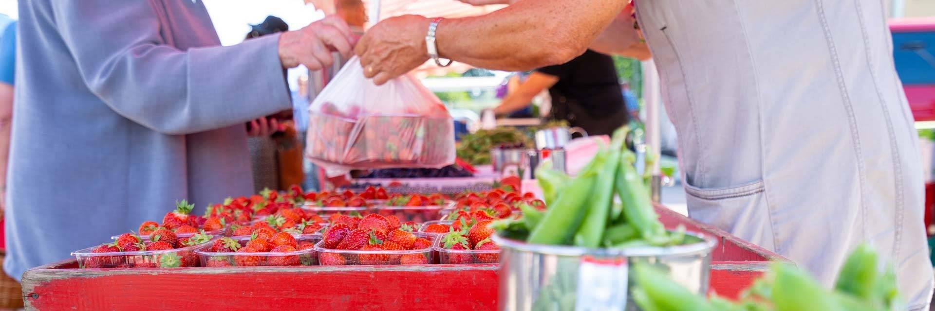 Mansikoiden ja herneiden myyntiä kesätorilla Kauppatorilla