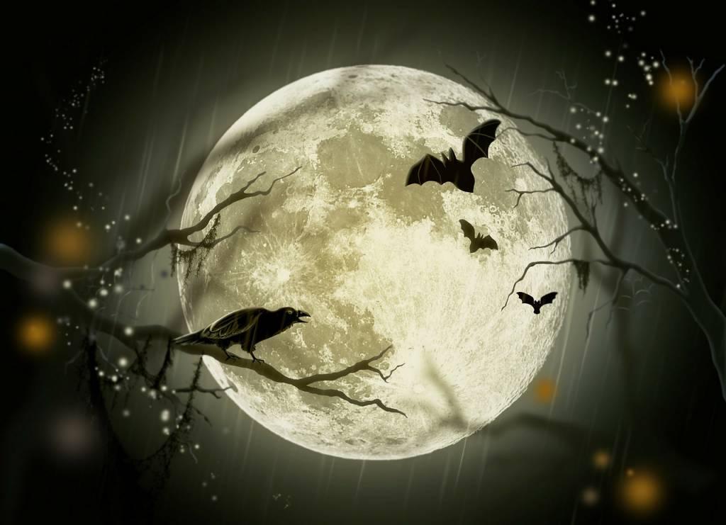 Iso kuu, varis ja lepakoita.