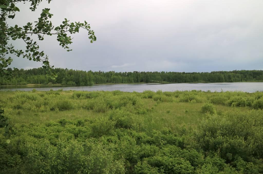 Vehreä maisema Vähäjärvelle.