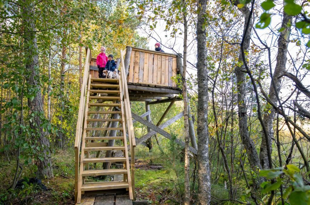 Perhe on kiivennyt Tykölänjärven lintutorniin