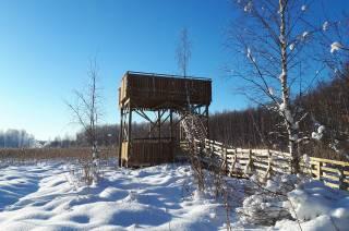 Vallonjärven luontopolun lintutorni aurinkoisena talvipäivänä lumisessa maisemassa.