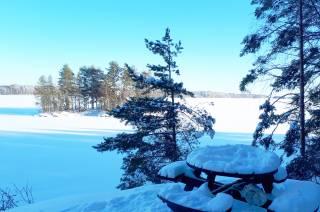 Talvinen järvimaisema Vanajavedelle Pappilanniemen luontopolulta.