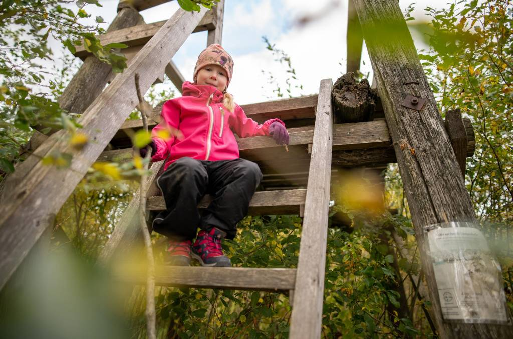 Tyttö istuu Vähäjärven lintutornin portailla.