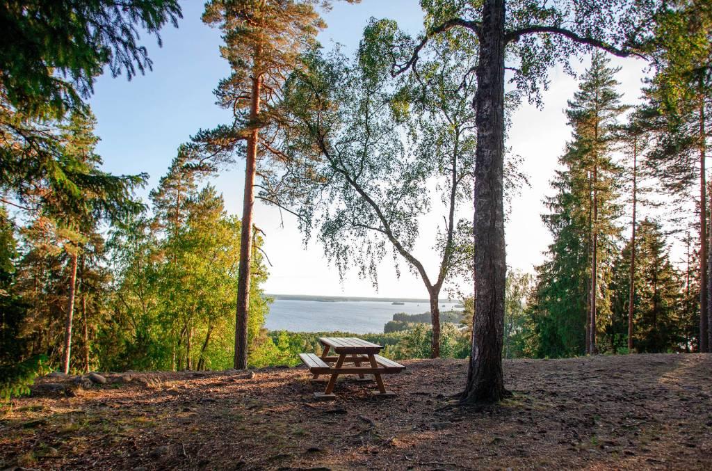 Levähdyspaikka Rapolanharjun näköalapaikalla kauniina kesäpäivänä.