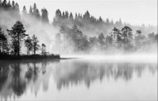 Sumu nousee järven pinnasta.