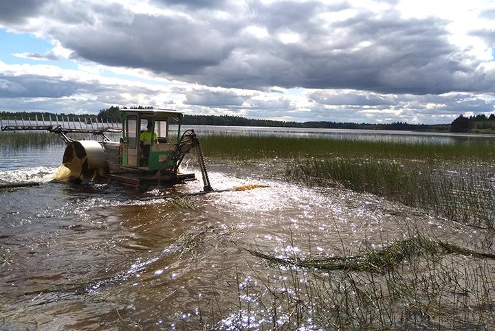 Ihminen tekee vesikasvien koneellista niittoa rantavedessä.