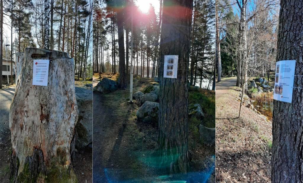 Kolmen kuvan kollaasi Kirjaksen kuntokävelyreitin rastien opastustauluista, jotka on kiinnitetty puihin ja kantoon.
