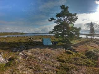 Lapin erämaata ja teltta.