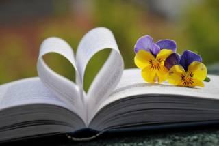 Avatun kirjan päällä kaksi keltavioletin väristä kukkaa.